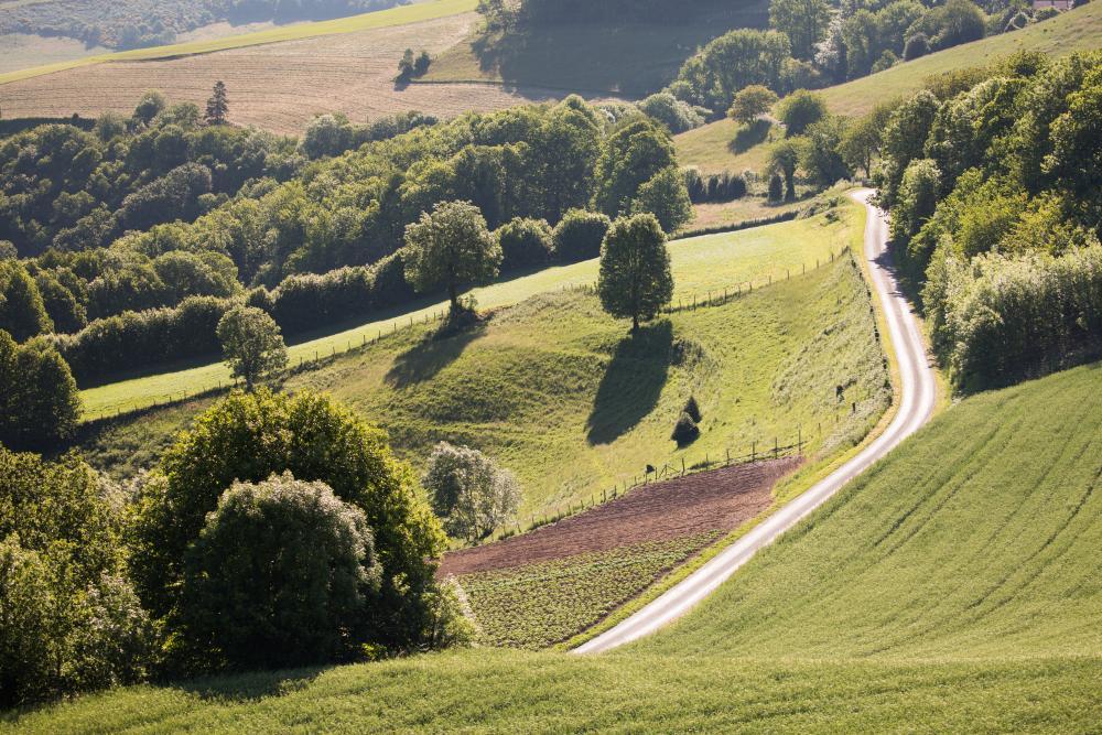 Dans la vallée du Tarn (photo Dominique Delpoux)