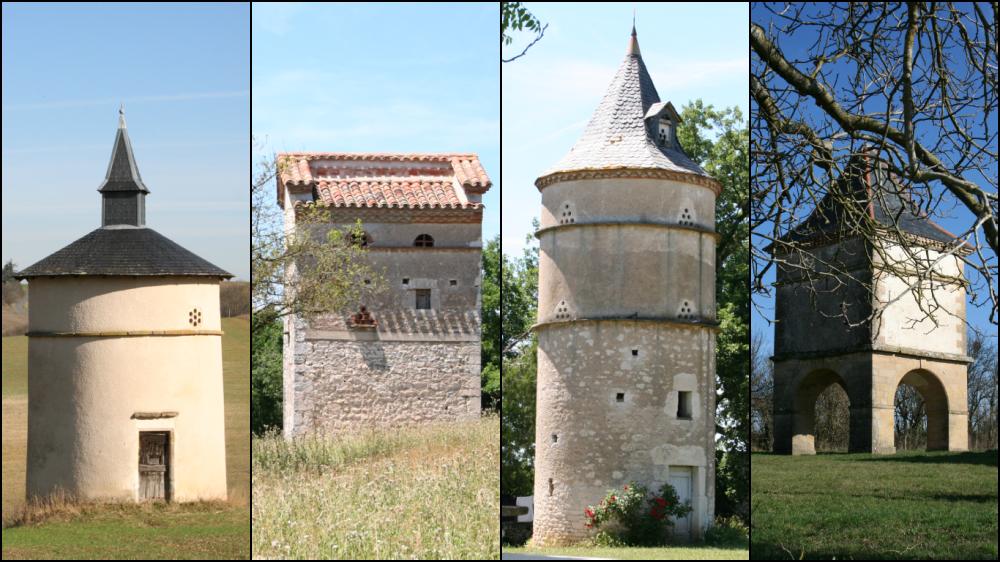 Pigeonniers en Pays Albigeois et Bastides