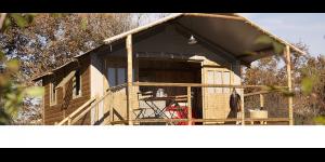Nouveaux hébergements au camping de Thuriès à Pampelonne
