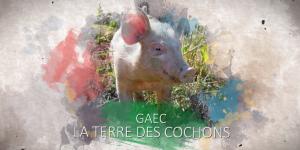 Gaec La terre des cochons à Cadix